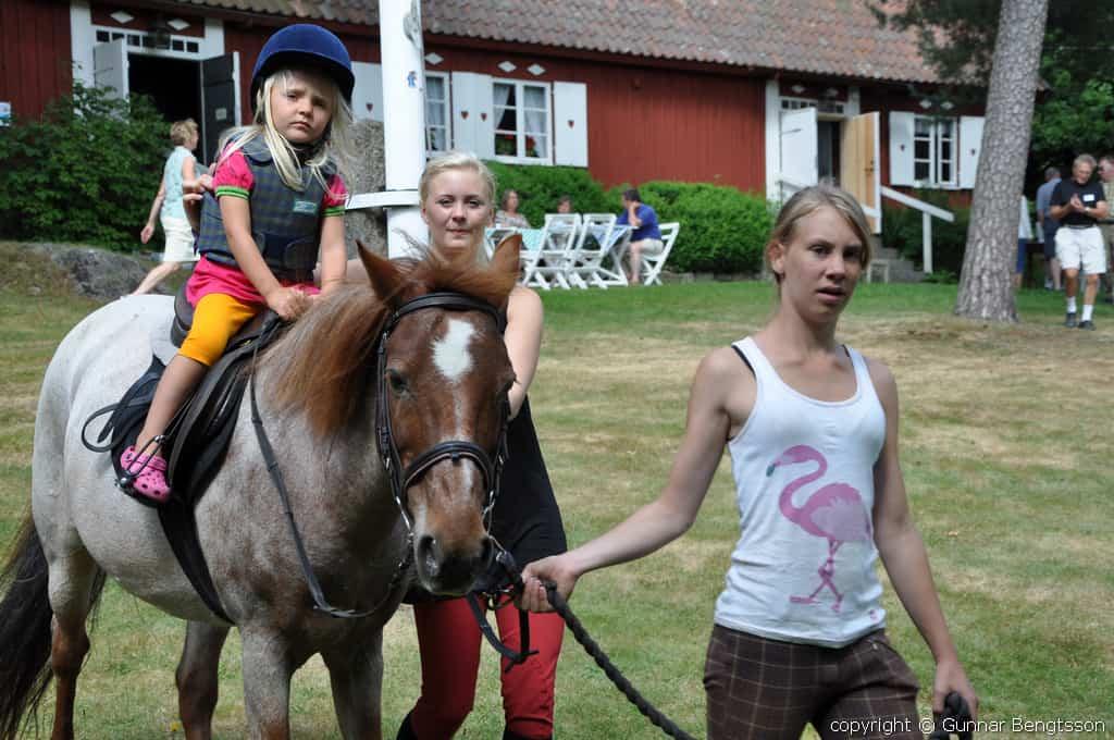 Ponnyridning